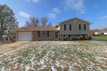 Real Estate Photo of MLS 18089805 1309 Camilla Street, Farmington MO